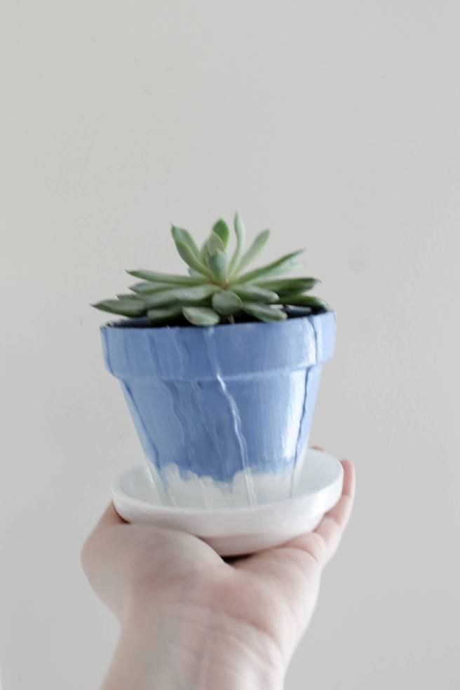 DIY Anthropologie Inspired Painted Terra Cotta Pots